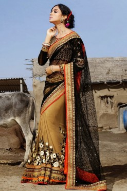 Traditional Black And Beige Net On Georgette Saree